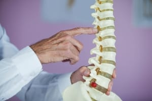 examinition of the spinal column